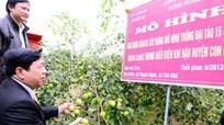 Hiệu quả ứng dụng khoa học kỹ thuật trong phát triển nông nghiệp