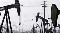 Triển vọng lạc quan về nhu cầu dầu mỏ của OPEC trong năm 2015