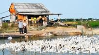 Xã Phú Thành (Yên Thành): Phấn đấu vững mạnh toàn diện