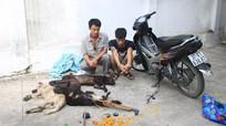 Cảnh sát cơ động bắt hai đối tượng trộm chó