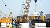 Nghệ An: Kim ngạch xuất khẩu 3 tháng đầu năm đạt 54 triệu USD