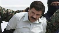 Trùm ma túy khét tiếng ở Mexico vượt ngục
