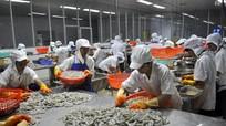 Tạo sức bật mới cho kinh tế thủy sản