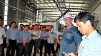 Công ty CP Lâm nghiệp Tháng Năm: Liên kết xây dựng vùng nguyên liệu