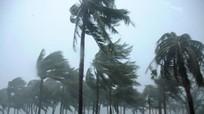 Số người chết do bão tại Trung Quốc lên đến 19 người