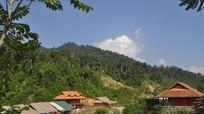 Khoanh nuôi, bảo vệ gần 200.000 ha rừng từ quỹ dịch vụ môi trường rừng