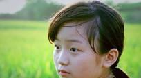 Chiếu 20 bộ phim Việt Nam miễn phí