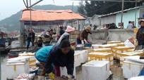 Thị xã Hoàng Mai có hơn 5.500 hội viên nông dân sản xuất giỏi