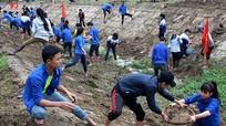 Hơn 1.000 đoàn viên thanh niên tham gia nạo vét kênh mương