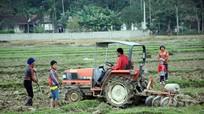 Tân Kỳ: 200 máy nông nghiệp phục vụ sản xuất