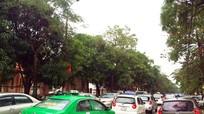 Thành phố Vinh lần đầu thí điểm đường 1 chiều