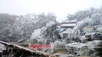 Rét kỷ lục, băng tuyết phủ trắng các dãy núi ở Nghệ An