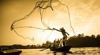 Xao động khoảnh khắc sông quê Nghệ An