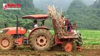 Xem máy trồng mía ở Anh Sơn