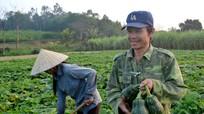 Những mô hình thu nhập hàng trăm triệu ở Giang Sơn Đông