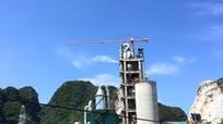 Thủ tướng cho phép Nghệ An chuyển 70,69ha rừng phòng hộ xây trạm nghiền xi măng