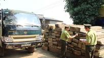 Thu giữ 10 khối gỗ trái phép