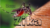 Việt Nam lập 4 đội phòng chống virus Zika