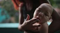 Du khách nhiễm virus Zika ủ bệnh tại Việt Nam