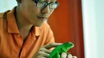 Xem kỳ đà, rắn, rùa, ếch nuôi cảnh trong bể kính ở Nghệ An