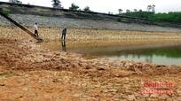 Yên Thành hơn 1.000 ha cây trồng mất mùa do hạn hán