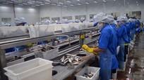Nghệ An: 86% lao động kỹ thuật có việc làm sau đào tạo