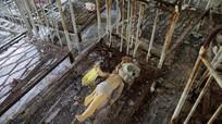 Những bức hình 'biết nói' 30 năm sau thảm họa hạt nhân Chernobyl