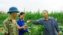Cụ ông 41 năm làm xóm trưởng ở Nghệ An