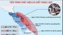 [Infographics] Toàn cảnh vụ cá chết hàng loạt tại biển miền Trung