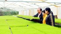 Ứng dụng khoa học kỹ thuật vào nông nghiệp ở Nghệ An
