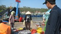 Quỳnh Lưu: Ngư dân bị ép giá khi bán hải sản