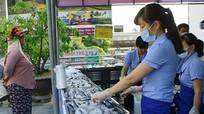 Ngư dân Huế bán 200 tấn cá sạch trong 3 ngày
