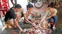 Nghề nuôi giữ hải sản thu tiền tỷ ở Cửa Lò
