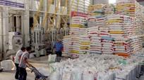 Thị trường xuất khẩu gạo của Việt Nam sẽ không bị ảnh hưởng