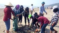 Quỳnh Lưu: Ra quân vệ sinh môi trường bãi biển