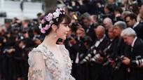 Nghi vấn Phạm Băng Băng không dự liên hoan phim Cannes vì mang thai