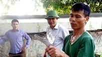Mô hình nuôi rắn hổ trâu đầu tiên ở Nghệ An