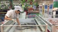 Nghệ An: Chỉ số giá tiêu dùng tháng 5 tăng 0,30%