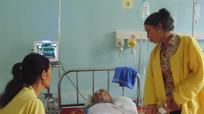 Nghệ An: Gia đình ăn rau lạ bị ngộ độc đã qua cơn nguy kịch