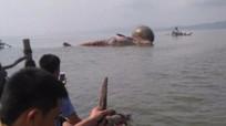 [Video] Tiếp cận xác cá voi chết ở Nghệ An