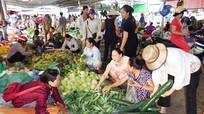 Chuyển đổi 50% chợ trên địa bàn Nghệ An theo mô hình mới