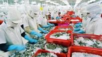 Xuất khẩu thủy sản Việt Nam: Đối mặt với nạn bơm tạp chất, cắm tăm tre