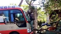 Nghệ An: Xe buýt nát đầu vì đâm vào cột điện