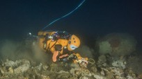Robot tiên cá tìm kho báu trong xác tàu đắm của vua Louis XIV