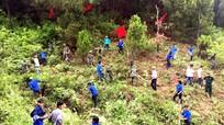 177.000 thanh niên Nghệ An tham gia chiến dịch tình nguyện hè