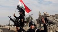 Iraq chiến thắng tại Fallujah: IS suy yếu hay gài bẫy?