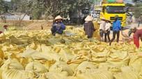 Hơn 100 doanh nghiệp xuất nhập khẩu qua cửa khẩu phụ, lối mở Nghệ An - Lào