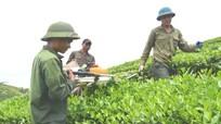 Xã Hùng Sơn (Anh Sơn): Phát huy vai trò đảng viên trong phát triển kinh tế