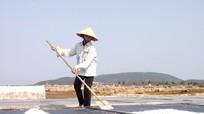 Diêm dân Nghệ An bám ruộng sản xuất muối