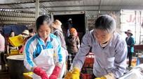 Quỳnh Lưu: Hơn 23 tỷ đồng nợ thuế khó đòi